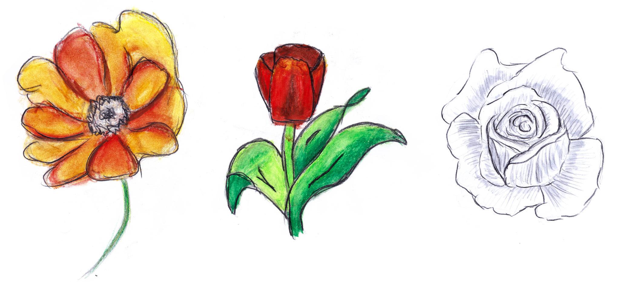 blumen-1 Sketches: Gemalte Blumen duften nicht, wenn man zu wenig Fantasie hat