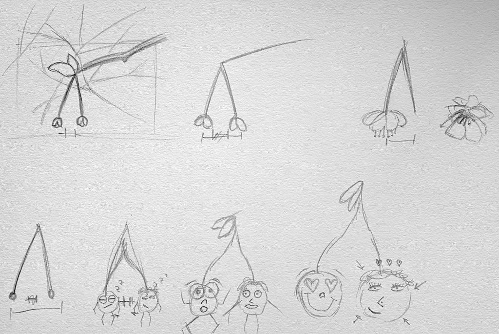 Skizze-GIF-Kreislauf-1024x685 Animation: Das Leben eines Kirschen-Pärchens