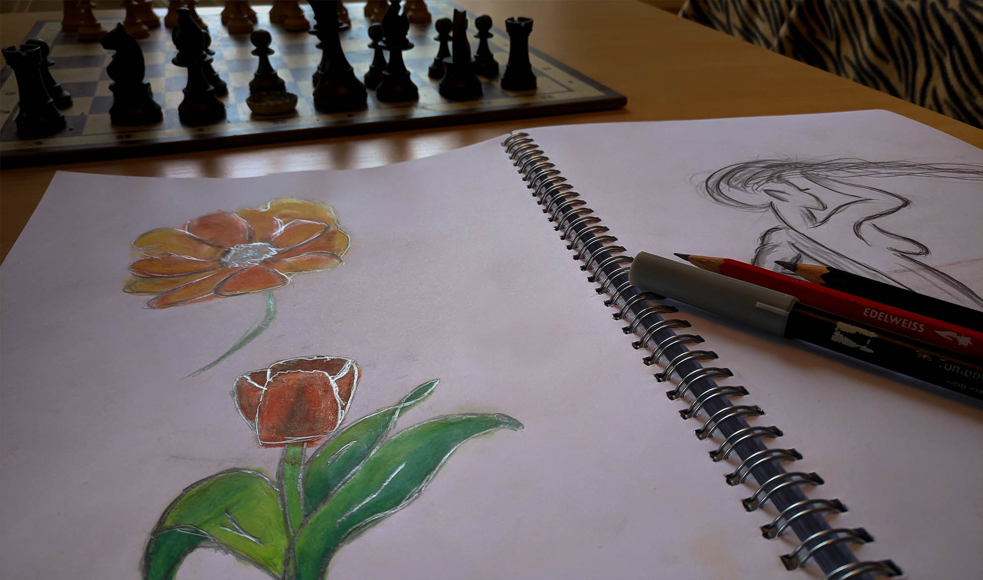 Slider Portfolio Zeichnung